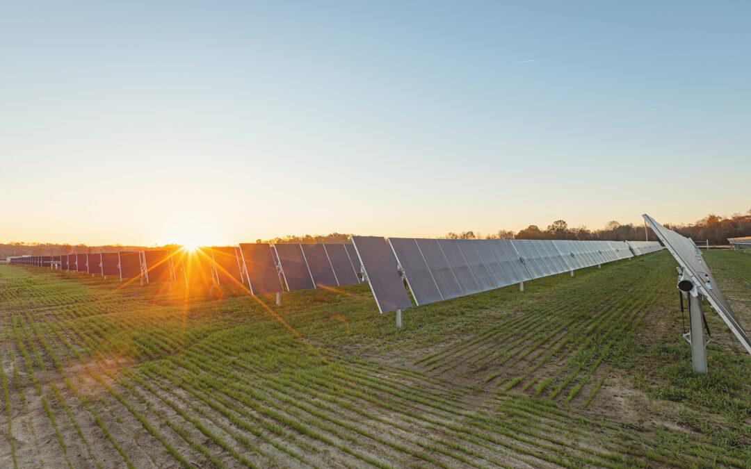 CenterPoint Energy's Solar Farm